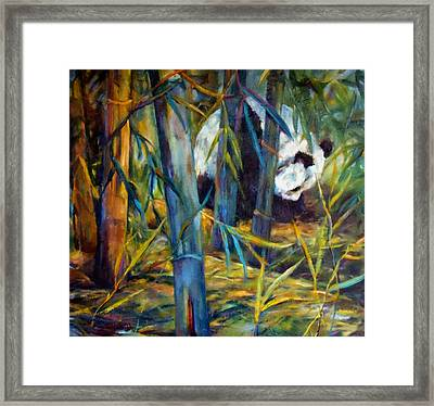 Panda In Bamboo Framed Print by Peggy Wilson
