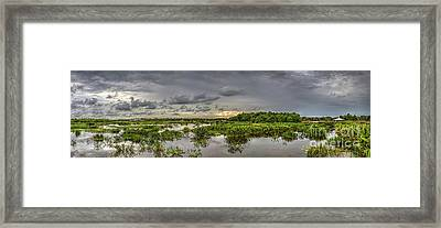 Panorama, Florida Wetlands At Sunset Framed Print by Felix Lai