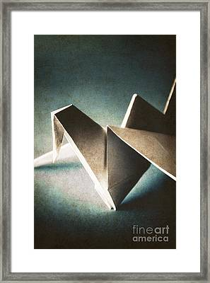 Paper Crane In Daylight Framed Print by Jorgo Photography - Wall Art Gallery