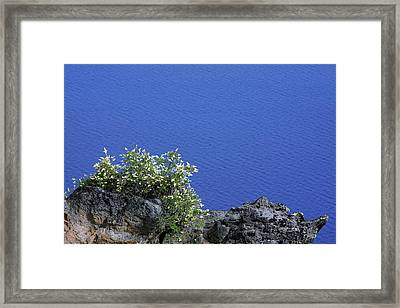 Paradise For Backpackers - Crater Lake In Crater National Park - Oregon Framed Print by Christine Till