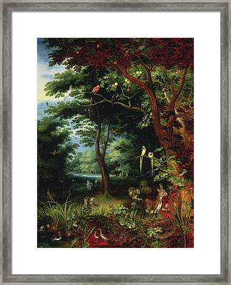 Paradise Scene With Adam And Eve Framed Print by Jan the Younger Brueghel
