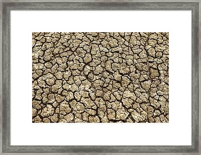 Parched Soil Framed Print by Todd Klassy