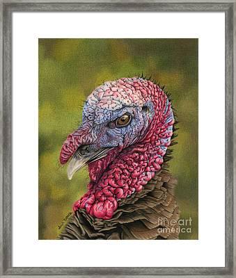 Pardon Me? Framed Print by Sarah Batalka