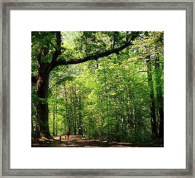 Paris Mountain State Park South Carolina Framed Print by Bellesouth Studio