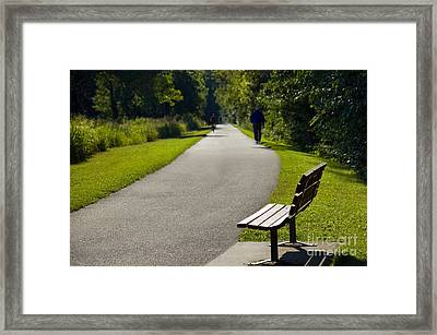 Park Bench And Person On Walking Trail Photo Framed Print by Paul Velgos