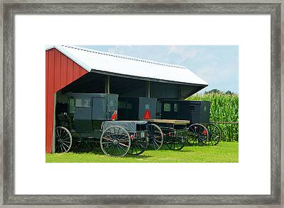 Parked Buggies Framed Print by Tina M Wenger