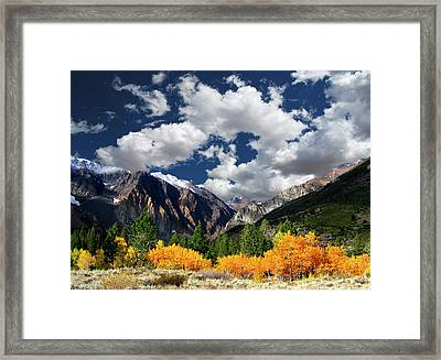 Parker Canyon Fall Colors California's High Sierra Framed Print by Bill Wight CA
