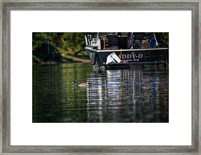 Passing Daddy O Framed Print by Shelley Smith