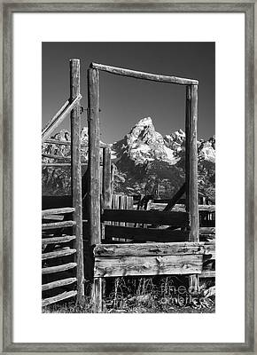 Past Its Time Framed Print by Sandra Bronstein