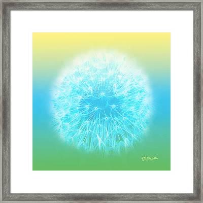 Pastel Dandelion Framed Print by Diane Parnell