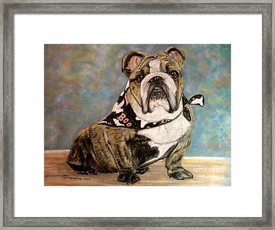 Pastel English Brindle Bull Dog Framed Print by Patricia L Davidson