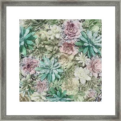 Pastel Succulents Framed Print by Cynthia Decker