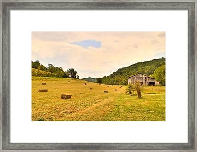 Pastorial Framland In Kentucky Framed Print by Douglas Barnett