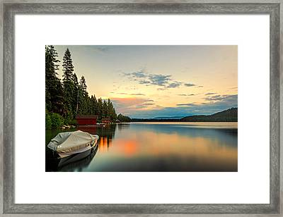 Patch Of Color Framed Print by Maria Coulson