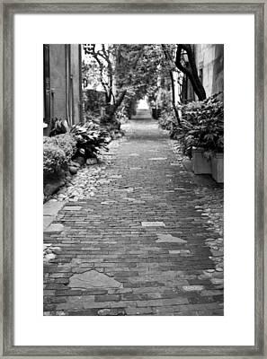 Patchwork Pathway Framed Print by Dustin K Ryan