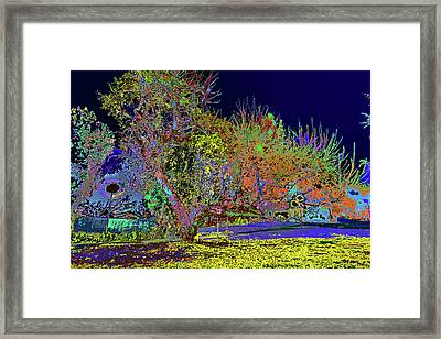 path past the tree at PCC Framed Print by Kenneth James