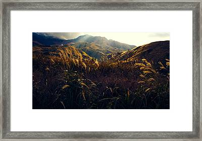 Path To The Top Framed Print by Britten Adams