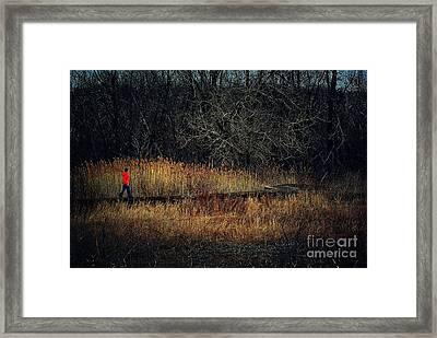 Pathway Framed Print by Frank J Casella