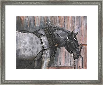 Patience Framed Print by Suzanne Sudekum