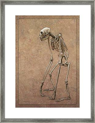 Patient Framed Print by James W Johnson