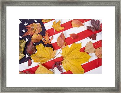 Patriotic Autumn Colors Framed Print by James BO  Insogna