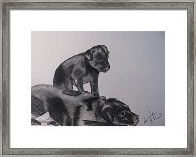 Patterdales Framed Print by Amanda Burek