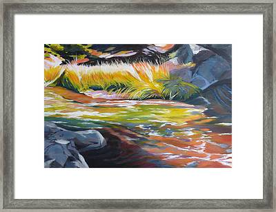 Paulina Creek Framed Print by Melody Cleary