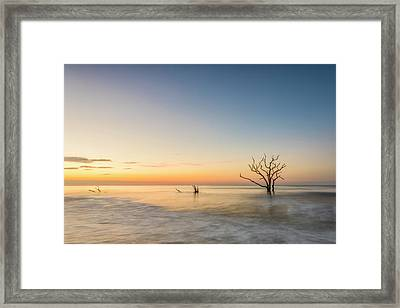 Peace In Botany Framed Print by Jon Glaser
