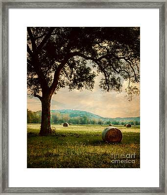 Peace In The Valley Framed Print by Tamyra Ayles