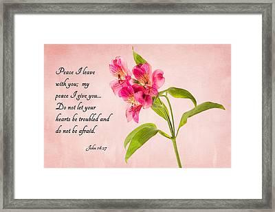 Peace Framed Print by Mary Jo Allen