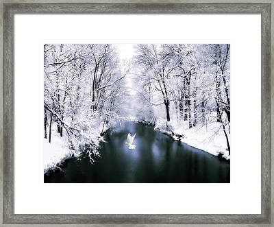 Peace On Earth 2 Framed Print by Jessica Jenney