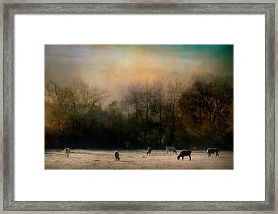 Peaceful Tennessee Morning Framed Print by Jai Johnson