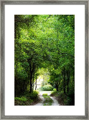 Peaceful Tranquility Framed Print by Shelby  Young