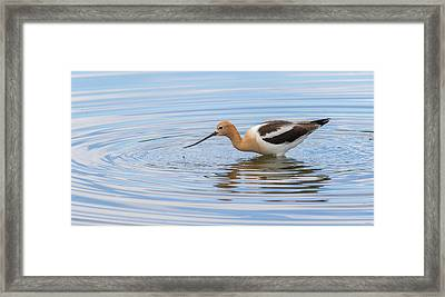 Peaceful Water And Nature Framed Print by Vicki Stansbury