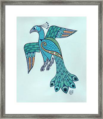 Peacock Framed Print by Ian Herriott
