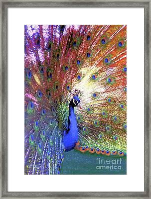 Peacock Wonder, Colorful Art Framed Print by Jane Small