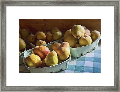 Pear Golden Framed Print by Caitlyn  Grasso