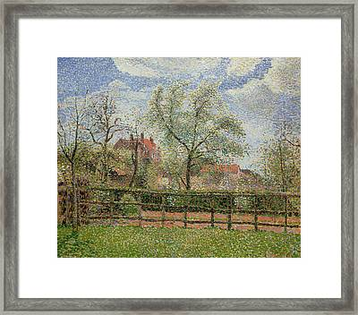 Pear Trees And Flowers At Eragny Framed Print by Camille Pissarro