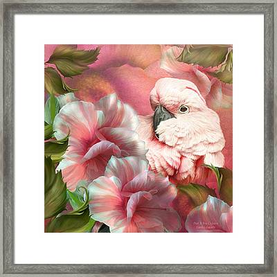 Peek A Boo Cockatoo Framed Print by Carol Cavalaris