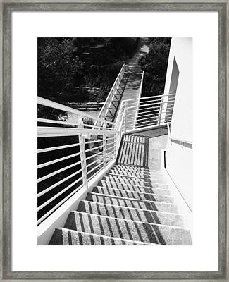 Peggy Notebaert Nature Museum Stairway Framed Print by Kyle Hanson