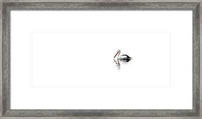 Pelican Adrift Framed Print by Az Jackson
