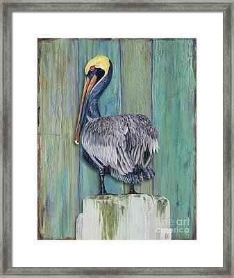 Pelican Perch 2 Framed Print by Danielle Perry