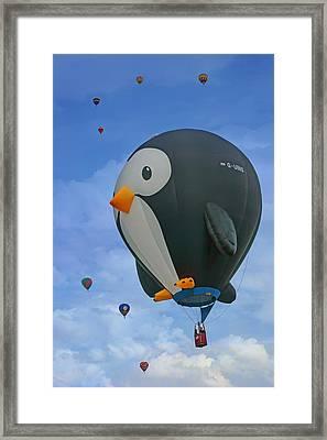Penguin - Hot Air Balloon - Albuquerque Framed Print by Nikolyn McDonald