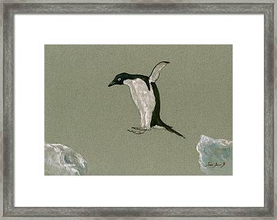Penguin Jumping Framed Print by Juan  Bosco
