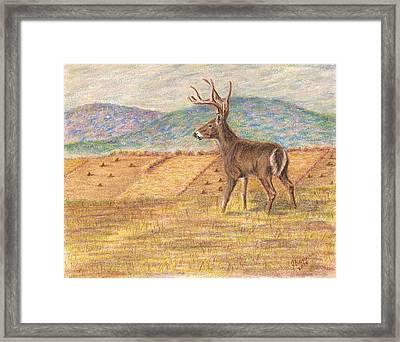 Pennsylvania Dawn Framed Print by Joann Renner