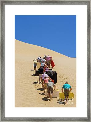 People Pushing Sandboards Up The Dune Framed Print by Patricia Hofmeester