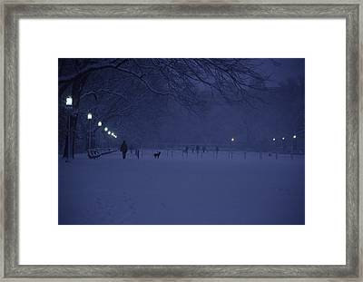 People Walk Their Dogs Framed Print by Stacy Gold