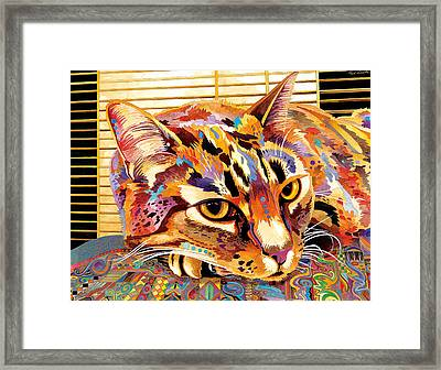 Pepa Framed Print by Bob Coonts