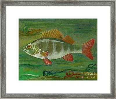 Perch Framed Print by Anna Folkartanna Maciejewska-Dyba