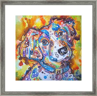 Percy Framed Print by Angela Green